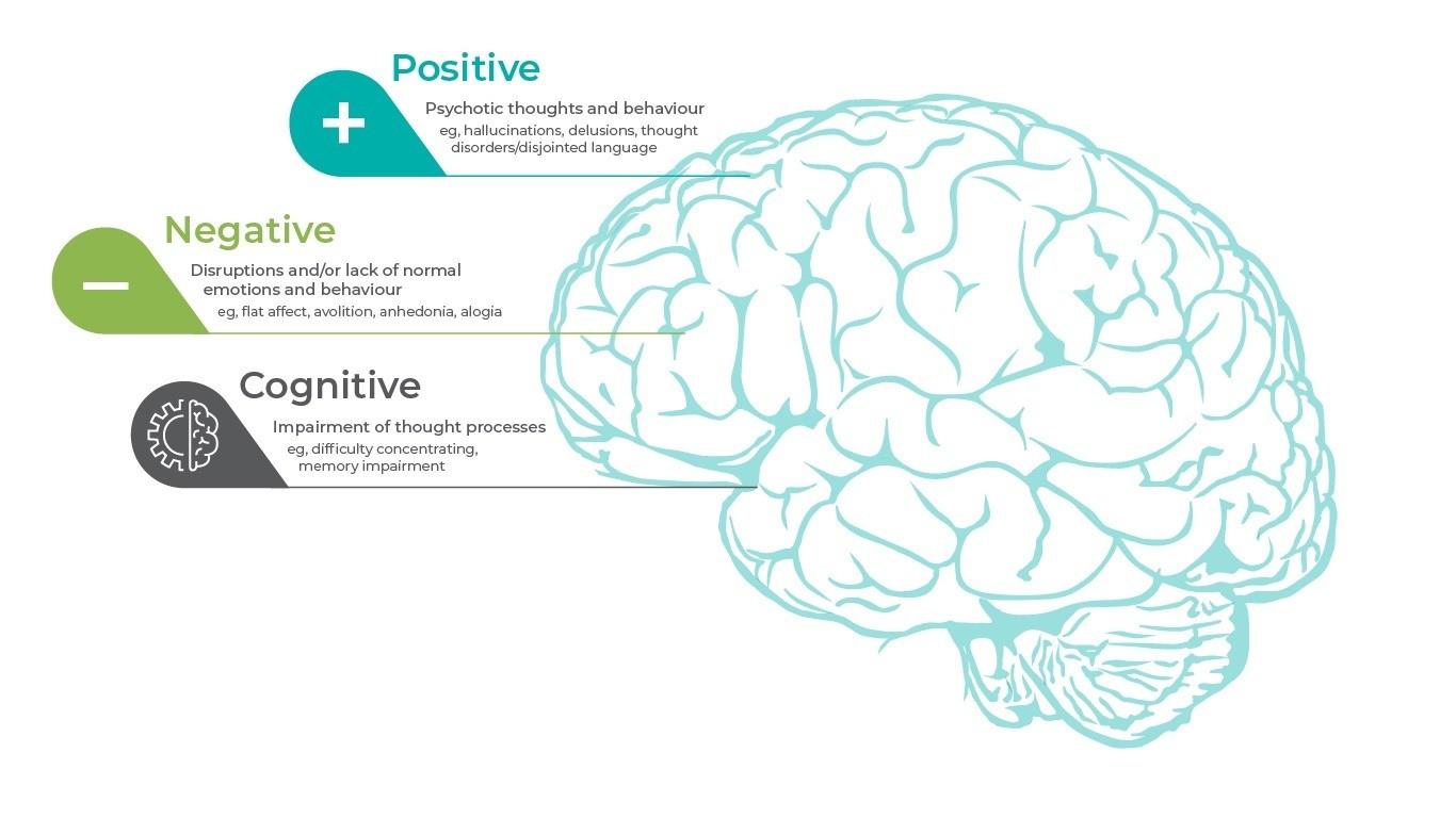 The 3 core symptom domains in schizophrenia
