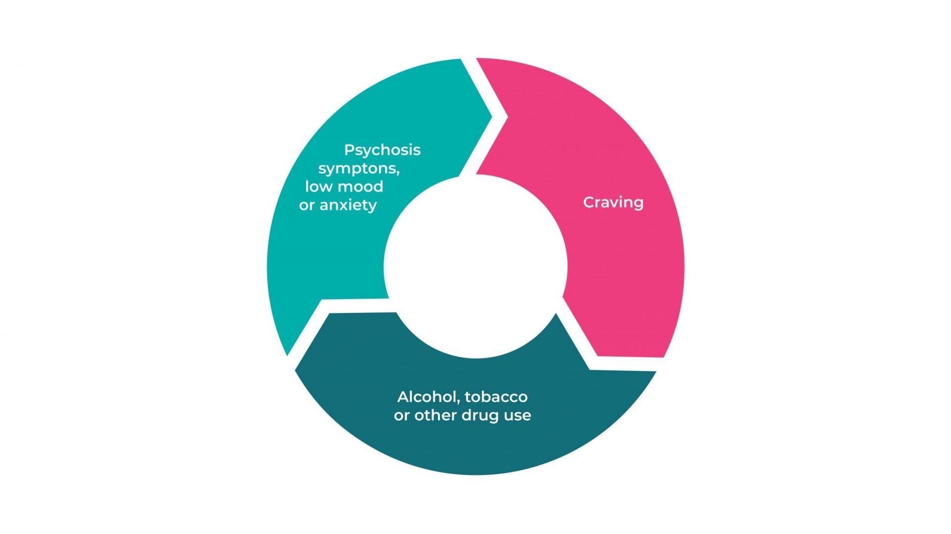 Cycle of psychosis symptoms, cravings, and drug use